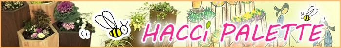HACCi PLETTE