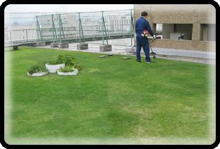 造園工事・土木工事・設計から施工、管理、花苗生産までえびす造園にお任せください!